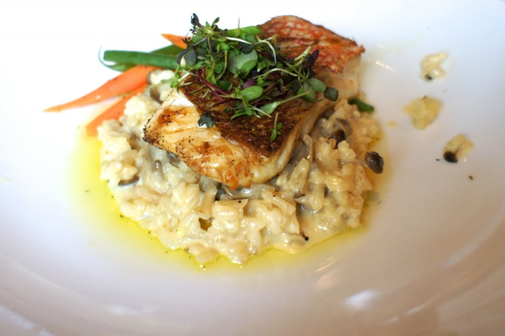 Grilled Fillet Of Snapper Fennel Risotto Passion Fruit